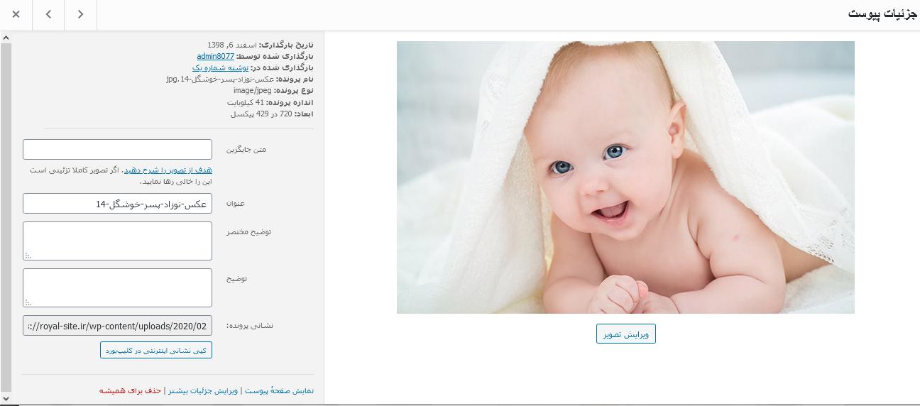ویرایش فایل های چند رسانه ایی در وردپرس رویال سایت